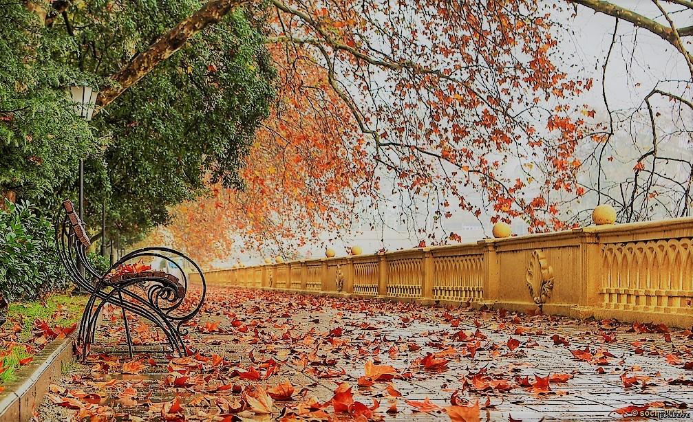 Осенний Сочи