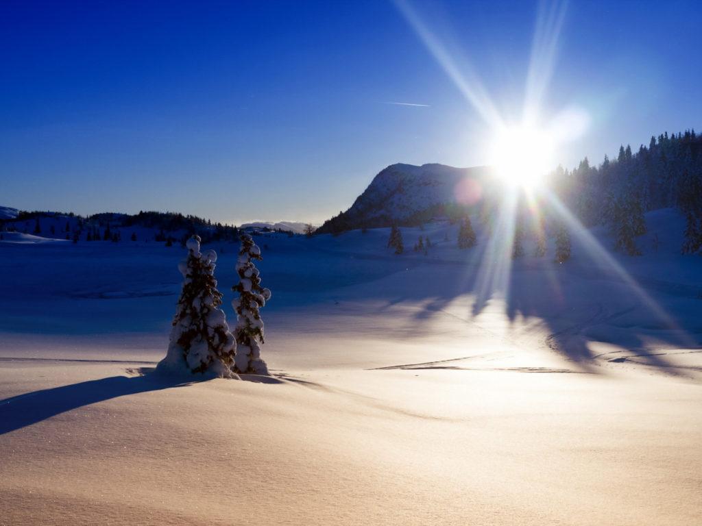 Светит, но не греет – как работает Солнце зимой