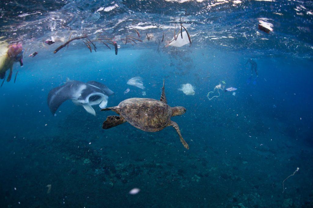 Пластиковые океаны и мусорные острова