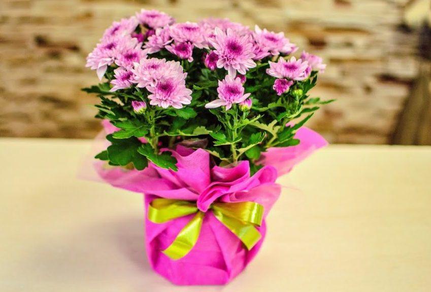 Поздравляем маму правильно: топ-8 подарков к 8 Марта