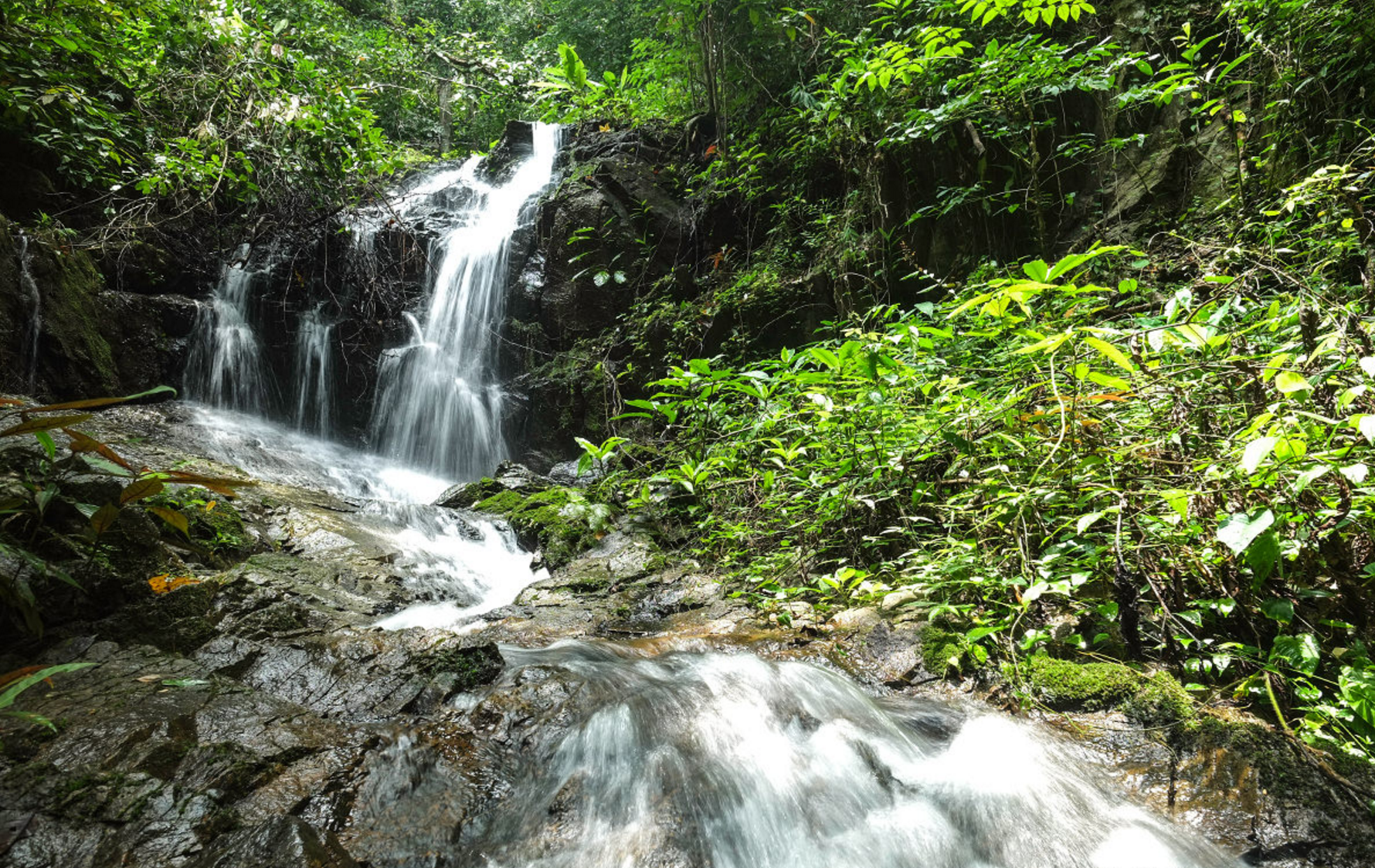 Самые запоминающиеся водопады острова Пхукет
