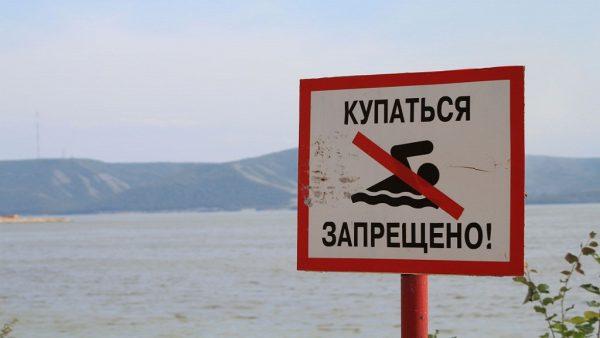 Мутанты в Черном море - реальные фото