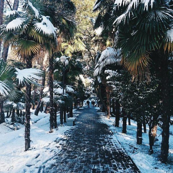 Какая погода будет в Сочи в декабре 2019
