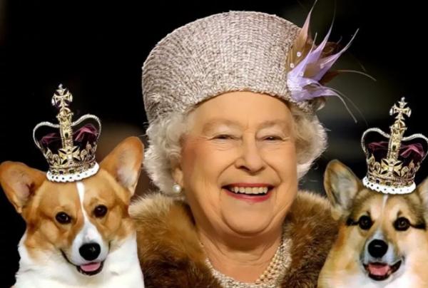 10 правил королевской семьи, которые непонятны простым людям