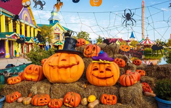 Как отмечают Хэллоуин в Сочи парке в 2019 году