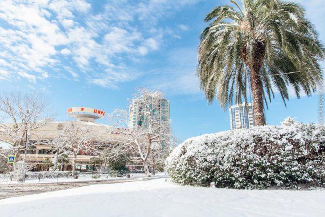 Какой будет погода в Сочи на Новый Год