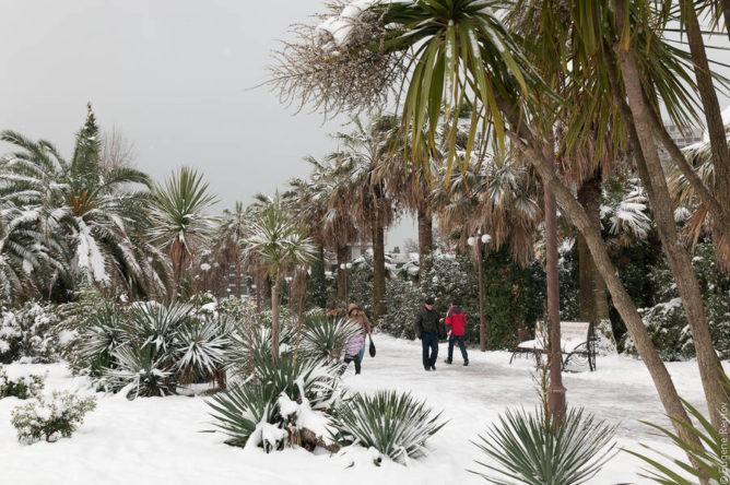 Температура воды и воздуха в Сочи в декабре 2021 года