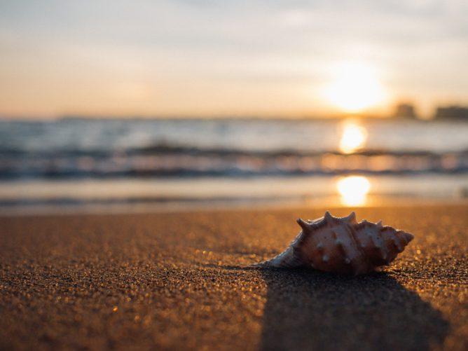 Лучшие пляжи мая
