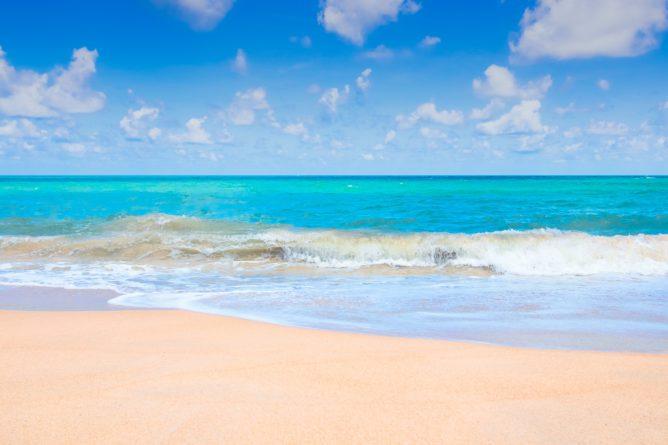 Отдых в Сочи все включено рядом с морем